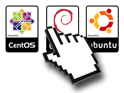 A Variety of Linux OS's